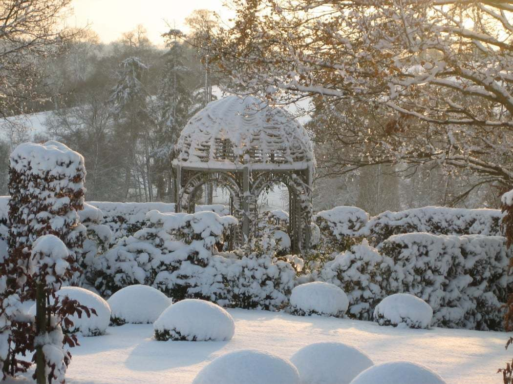 Snowy garden image from Twigs Gardens, a TrustMark firm (1)