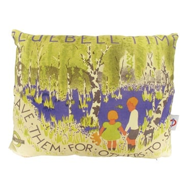 Bluebell Time Cushion - Henry Perry