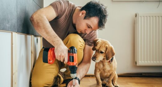 Five pet-friendly home improvements